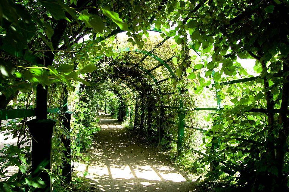 Pergola ogrodowa drewniana - to konieczność w ogrodzie
