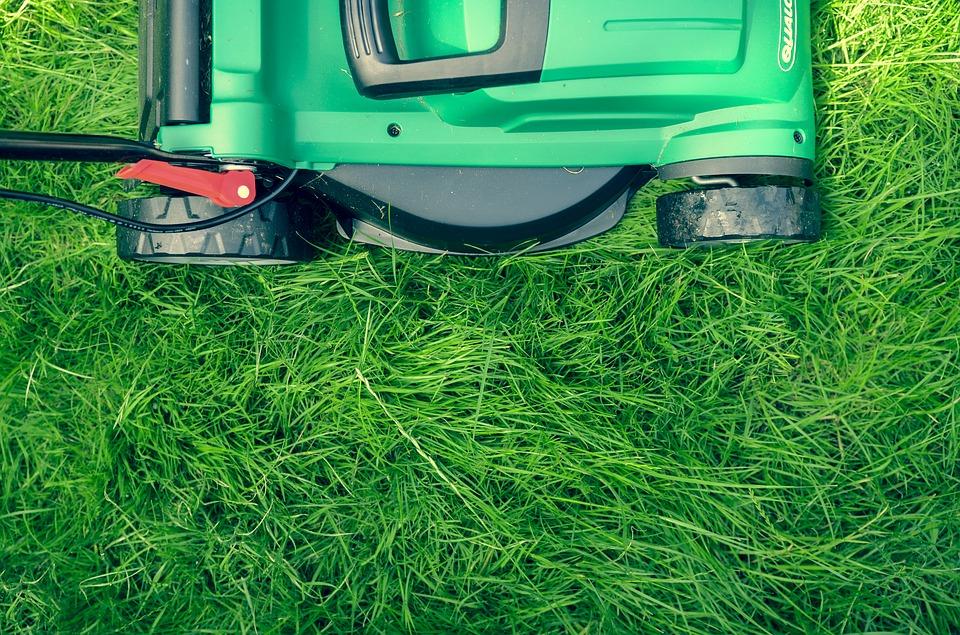 Dobra jest trawa uniwersalna