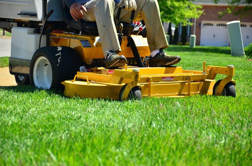 Renowacja trawnika - potrzeba tylko kilku kroków